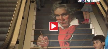 Ludwig nimmt die Treppe
