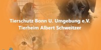 Tierheim Bonn- Thema: Die Ratte Speedy